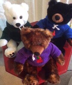 GEG love bears